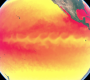 Mesmerising animation of 2016 sea surface temperature